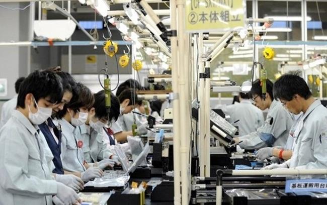 Bình quân mỗi năm An Giang phấn đấu đưa ít nhất 300 người đi làm việc ở nước ngoài theo hợp đồng.