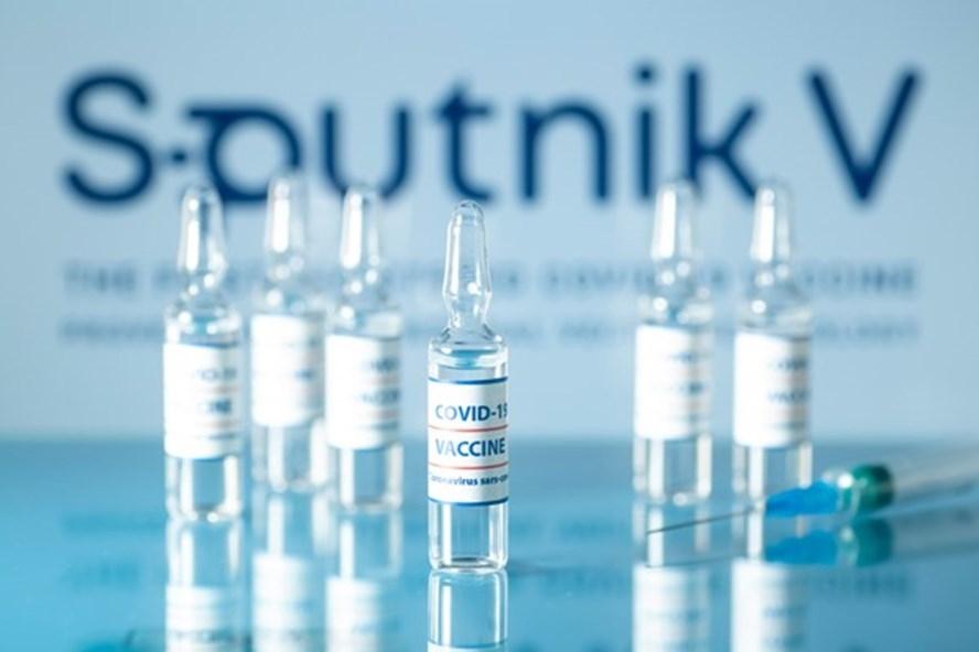 Chính phủ đồng ý cho Tập đoàn T&T đàm phán mua 40 triệu liều vaccine Sputnik V