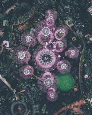 Singapore khác lạ đến ngỡ ngàng