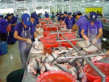 Năm 2016: Kỳ vọng xuất khẩu thủy sản tăng 6,3%