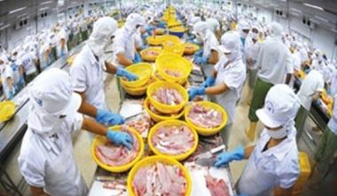 Cần quản lý, sử dụng kháng sinh hiệu quả vì nền nông nghiệp sạch