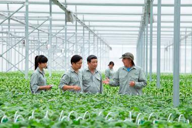 Điều gì khiến sản xuất sạch hơn ngày càng được chú trọng?