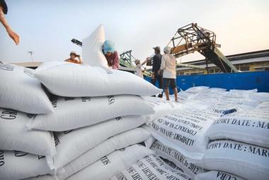 """Gạo Việt phải """"nâng chất"""" để mở rộng thị trường xuất khẩu"""