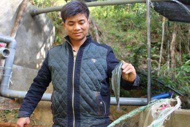 Trại cá hồi trên đỉnh Mẫu Sơn của chàng thanh niên Dao