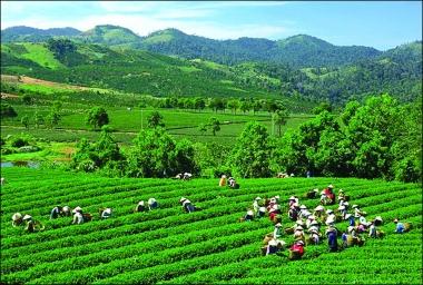 Đánh giá 5 năm thực hiện tăng trưởng xanh ở Việt Nam