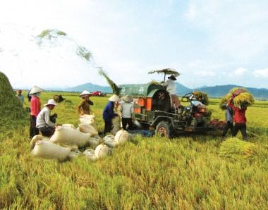 Nông nghiệp Việt Nam năm 2018: một năm nhìn lại
