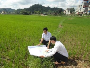 Công bố số liệu kiểm kê đất đai năm 2019 trước quý II/2021