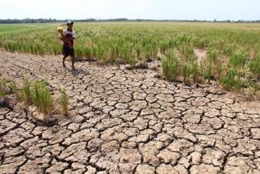 """Hạn hán và xâm nhập mặn:""""Thảm họa"""" đến từ các đập thủy điện trên sông Mekong"""