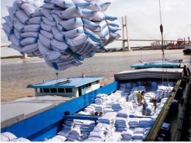 Năm 2018, Việt Nam có thể xuất khẩu 6,5 triệu tấn gạo