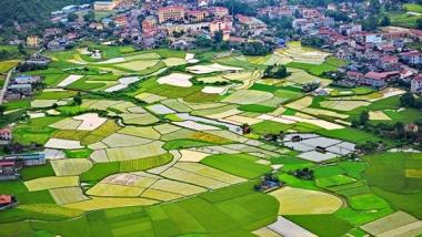 TP. Hà Nội: 99,21% đất nông nghiệp sau dồn điền đổi thửa được cấp giấy chứng nhận