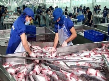 Dịch Covid-19 khiến DN thủy sản sụt giảm từ 35%-50% đơn hàng