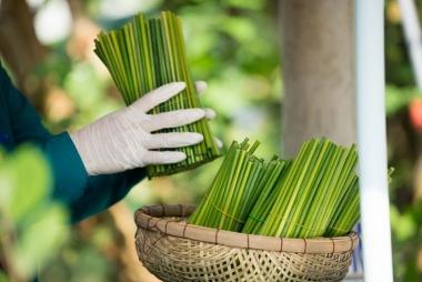 Xu hướng xanh và sạch ảnh hưởng đến các ngành nghề sản xuất tương lai như thế nào?