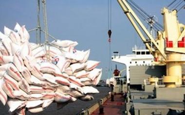Mất hơn 500 triệu USD do xuất khẩu trong nông nghiệp giảm