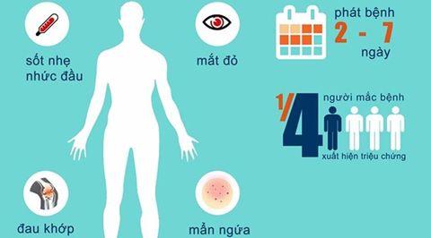 Việt Nam nâng cấp phòng chống dịch bệnh do virus Zika lên mức độ 2