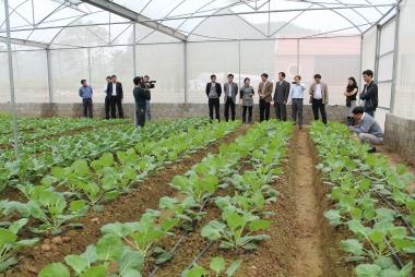 Thúc đẩy sản xuất nông nghiệp hữu cơ trong lĩnh vực trồng trọt