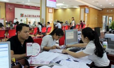 Agribank tiếp tục được vinh danh Thương hiệu mạnh Việt Nam 2017