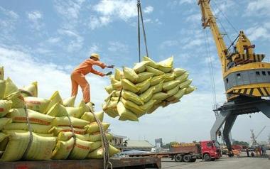 Xuất khẩu gạo trở lại bình thường từ đầu tháng 5