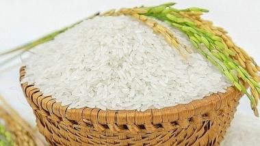 Sắp đấu giá 1,67 triệu cổ phần của Công ty Lương thực Lương Yên