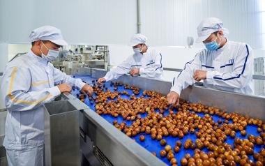 Chìa khóa để doanh nghiệp Việt xuất khẩu bền vững