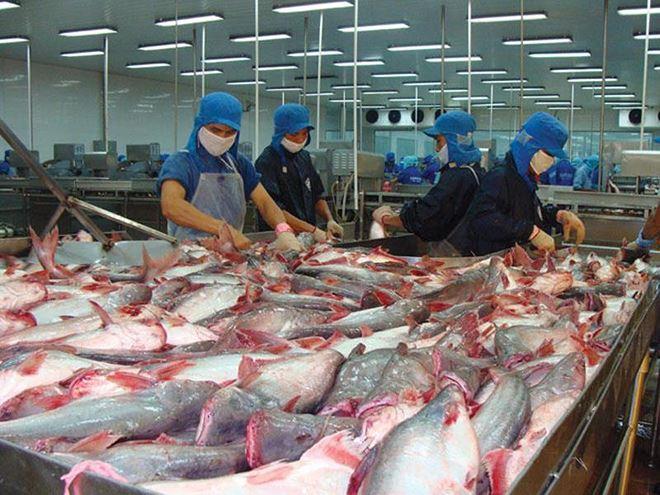 Quý II/2021, xuất khẩu cá tra kỳ vọng tiếp tục tăng trưởng