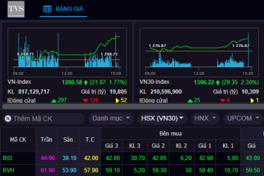 Chứng khoán Thiên Việt muốn chuyển giao dịch cổ phiếu sang sàn HNX