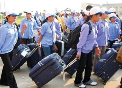 Cần từng bước khôi phục hoạt động xuất khẩu lao động