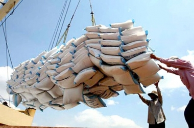 Phấn đấu đạt 50% sản lượng gạo xuất khẩu thương hiệu Việt Nam