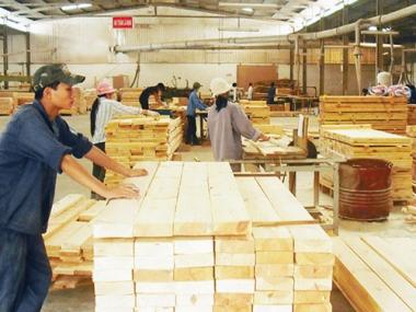 Để xuất khẩu gỗ của Việt Nam hưởng ưu đãi trong TPP: Không dễ!