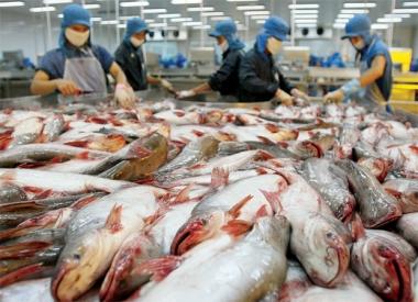 102,2 tỷ đồng nâng cao năng lực cạnh tranh ngành thủy sản