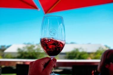 Resveratrol trong rượu vang đỏ có thể giảm sự cứng động mạch ở người bị bệnh tiểu đường