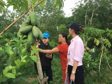 Giao lưu Khởi nghiệp và Trải nghiệm thực tế tại Bình Phước