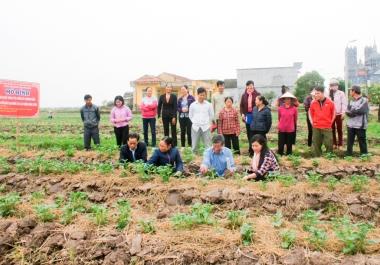 Hoạt động khuyến nông đón nhận nhiều ưu đãi