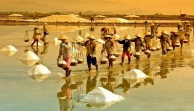 Khám phá 4 nơi sản xuất muối lớn nhất Việt Nam