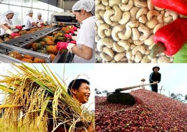 4 tháng đầu năm, sản xuất nông, lâm nghiệp và thủy sản diễn ra thuận lợi