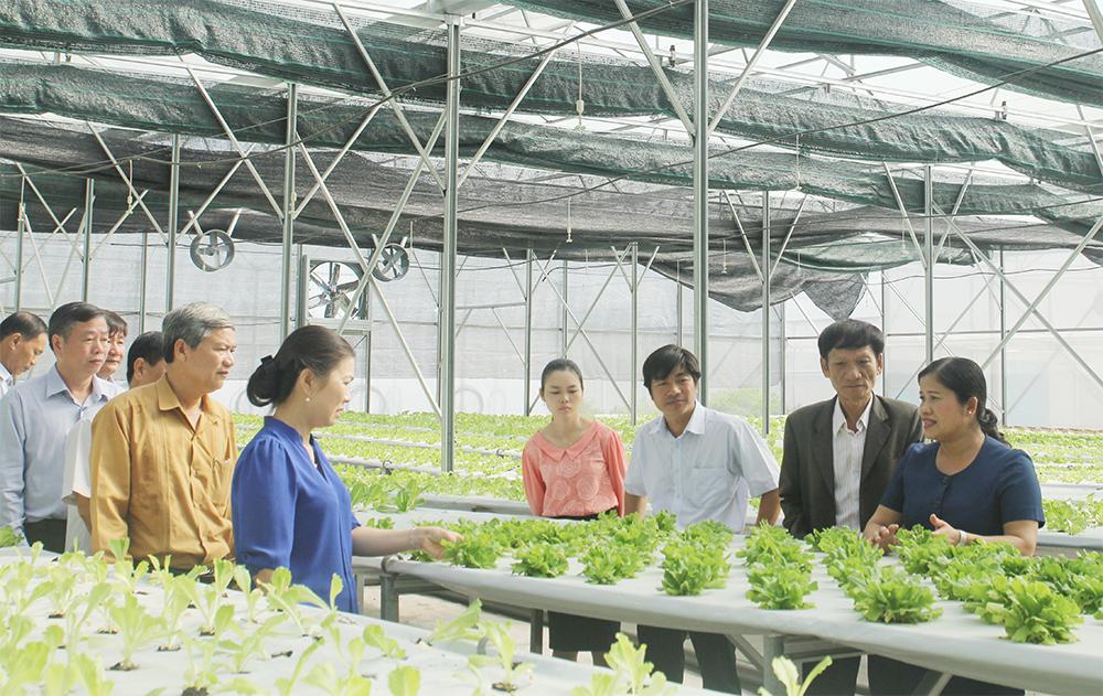 Giao Bộ Kế hoạch và Đầu tư hoàn thiện Kế hoạch phát triển kinh tế tập thể, hợp tác xã