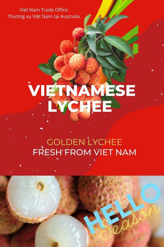 Khoảng 100 tấn vải thiều Việt Nam sắp có mặt tại Úc