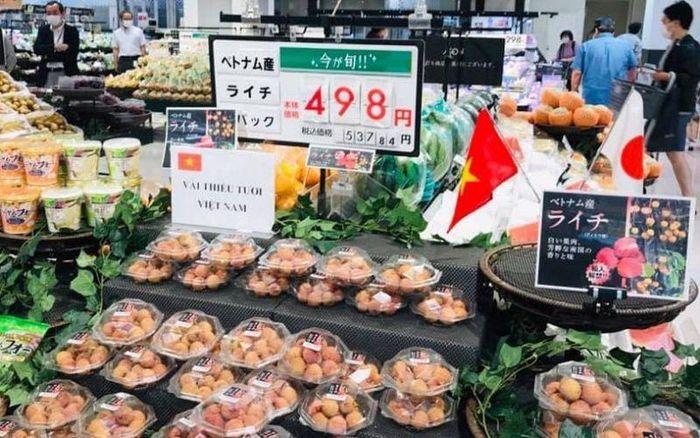 Vải thiều Việt Nam được đón nhận tích cực tại thị trường Nhật Bản