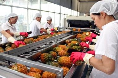 Xuất khẩu rau quả: Tìm hướng đi mới