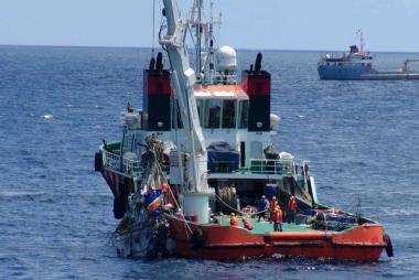 Bộ Quốc Phòng: 9 thành viên Tổ bay CASA-212 đã hy sinh