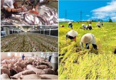 Bức tranh ngành nông nghiệp 06 tháng đầu năm 2016