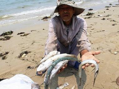 Formosa - Thủ phạm gây ra vụ cá chết hàng loạt tại 4 tỉnh miền Trung