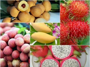 Thúc đẩy xuất khẩu nông sản Việt Nam sang Australia