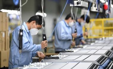 Số doanh nghiệp gia nhập thị trường tăng, cần giúp doanh nghiệp trụ vững trong đại dịch
