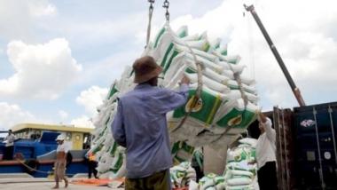 Tiếp tục sửa đổi thuế GTGT đối với gạo, phân bón, thức ăn chăn nuôi