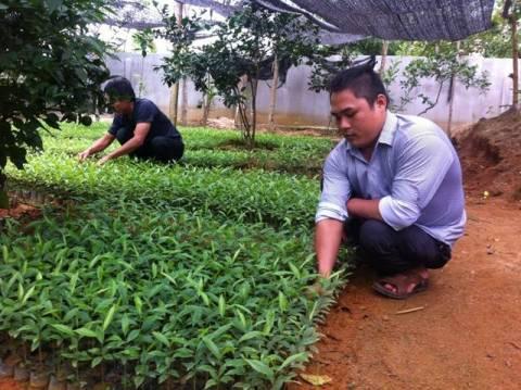 Tạo điều kiện tốt nhất phát triển kinh tế tập thể cho thanh niên Hà Tĩnh