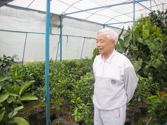 Gặp người đàn ông đầu tiên mang giống cây trồng từ Úc về Tây Nguyên