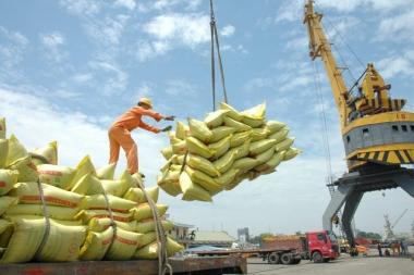 Xuất khẩu gạo cả năm khó về đích