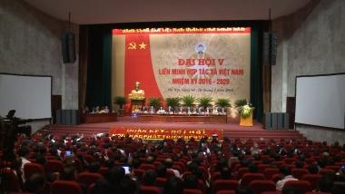 Liên minh HTX:  Phát huy vai trò nòng cốt dẫn dắt phong trào hợp tác xã phát triển