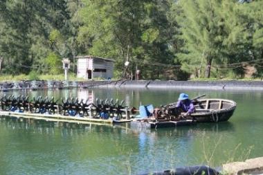 GRDP tỉnh Quảng Trị tăng 6,56% trong 6 tháng đầu năm