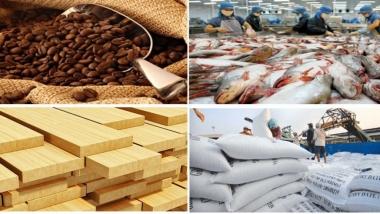 Kim ngạch xuất khẩu nông lâm thuỷ sản 6 tháng đầu năm 2018 đạt 19,4 tỷ USD